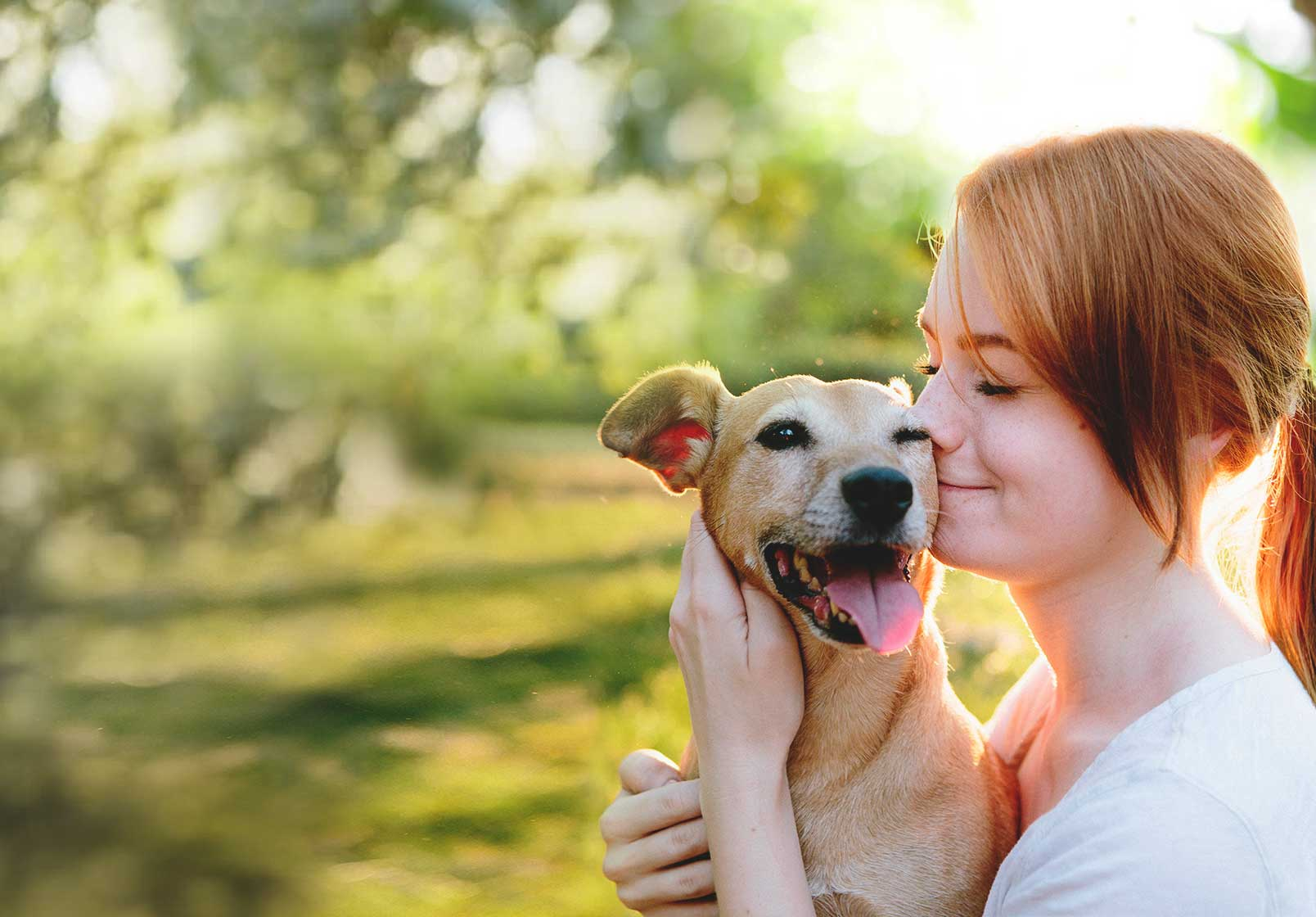 Dog Bite Insurance – Are You Covered?